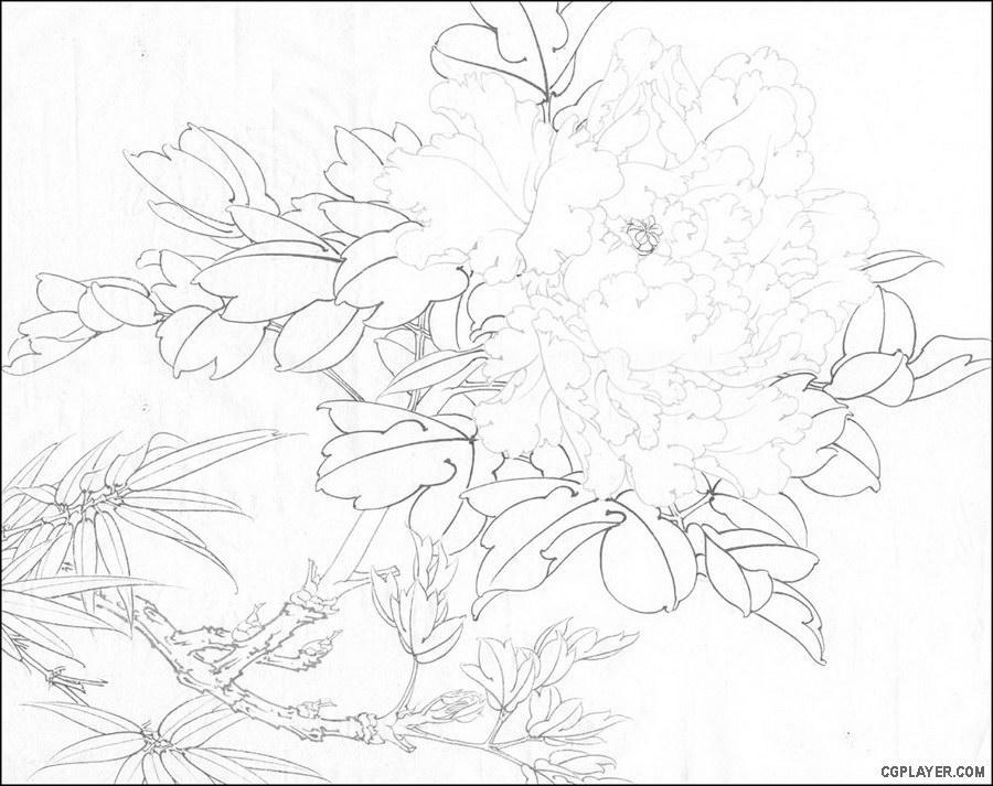 工笔画尤其是折枝工笔花鸟画中